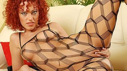 Porn Video Shantie