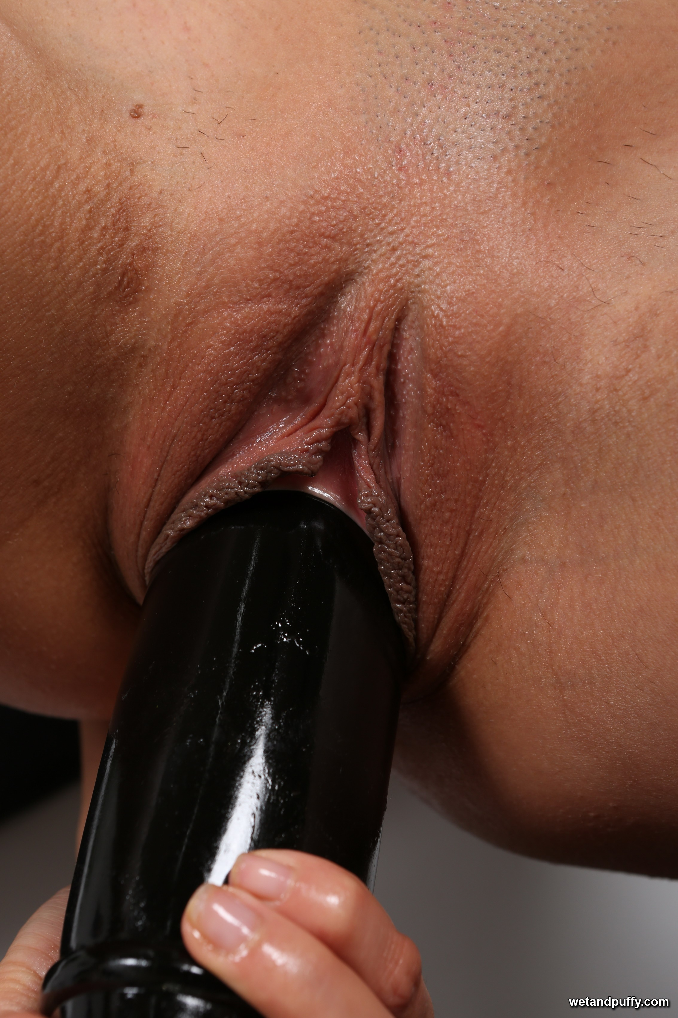 Alexa Tomas movies and pictures at Wet And Puffy